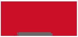 IMGI Srl Logo